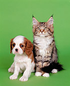 DOK 01 RK0044 02