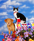 DOK 01 RK0057 01
