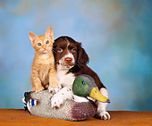 DOK 01 RK0101 02