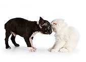 DOK 01 RK0535 01