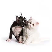 DOK 01 RK0536 01