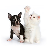 DOK 01 RK0538 01