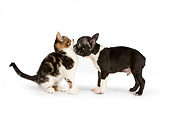 DOK 01 RK0545 01