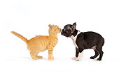 DOK 01 RK0548 01