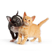 DOK 01 RK0549 01