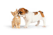 DOK 01 RK0553 01