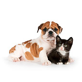 DOK 01 RK0557 01