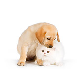 DOK 01 RK0564 01
