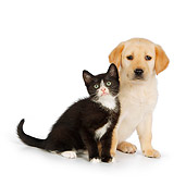 DOK 01 RK0566 01