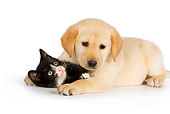 DOK 01 RK0568 01