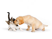 DOK 01 RK0574 01