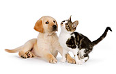 DOK 01 RK0578 01