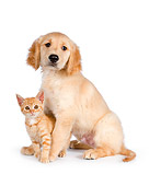DOK 01 RK0589 01