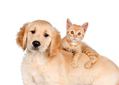 DOK 01 RK0591 01