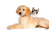 DOK 01 RK0592 01