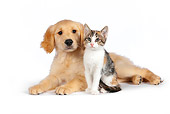 DOK 01 RK0595 01