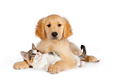 DOK 01 RK0598 01