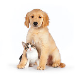 DOK 01 RK0599 01