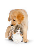 DOK 01 RK0602 01