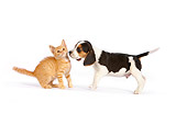 DOK 01 RK0608 01