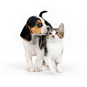 DOK 01 RK0609 01