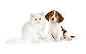 DOK 01 RK0618 01