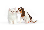 DOK 01 RK0619 01