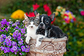 DOK 01 RK0634 01