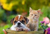 DOK 01 RK0639 01