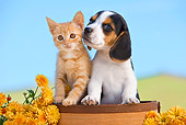 DOK 01 RK0643 01