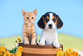 DOK 01 RK0644 01