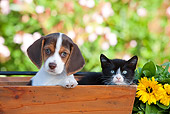 DOK 01 RK0647 01