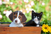 DOK 01 RK0648 01
