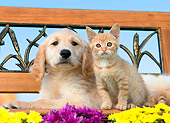 DOK 01 RK0660 01