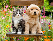 DOK 01 RK0671 01
