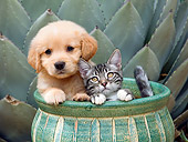 DOK 01 RK0674 01
