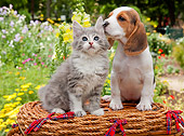 DOK 01 RK0679 01