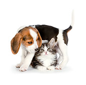 DOK 01 RK0694 01