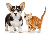 DOK 01 RK0727 01