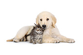 DOK 01 RK0746 01