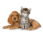 DOK 01 RK0764 01
