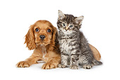 DOK 01 RK0766 01