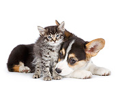 DOK 01 RK0773 01