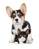DOK 01 RK0782 01