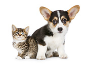 DOK 01 RK0783 01
