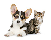 DOK 01 RK0784 01