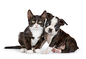 DOK 01 RK0785 01