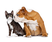 DOK 01 RK0787 01