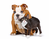 DOK 01 RK0788 01