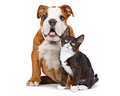 DOK 01 RK0789 01